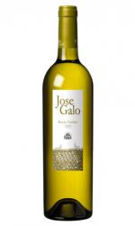 José Galo Viñas Viejas (Rueda) - Mariano Madrueño
