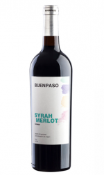 Buenpaso (vino de Madrid) - Mariano Madrueño