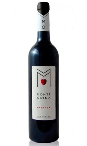 Monte Odina - Comprar vino crianza somontano