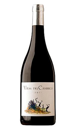 Viñas del Cámbrico (vino de Salamanca)